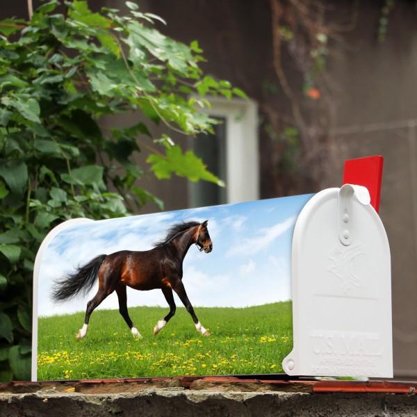 amerikanischer briefkasten wei pferd banjado. Black Bedroom Furniture Sets. Home Design Ideas